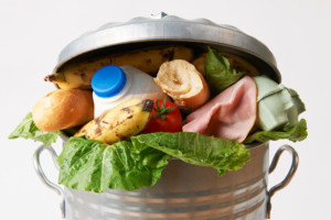 Be a Food Waste Warrior
